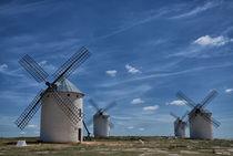 Windmühlen La Mancha von Iris Heuer