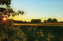 'Sonnenuntergang im Wittmoor' by Iris Heuer