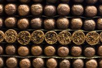 SMOKING von Manuela Russo