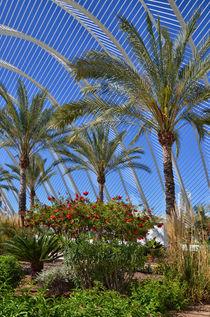 Palmengarten by Iris Heuer