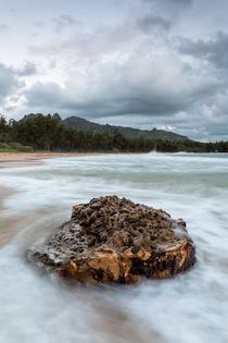 Strand auf Kauai von Florian Westermann