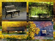 Benches In The Park  by bebra
