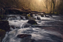 Fingle Cascades by Chris Frost