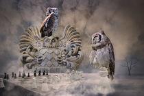 Der Schachcomputer von garrulus-glandarius
