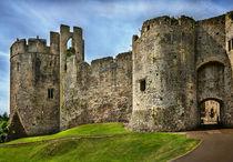 Gateway to Chepstow Castle von Ian Lewis
