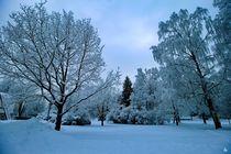 Winterland von Heidi Piirto