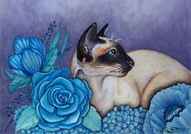 Chocolate Point Siamese Cat by Sandra Gale