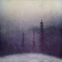 Violet by Priska  Wettstein