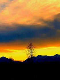Sonnenuntergang von rewe