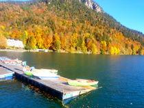 Bootssteg Natur  Herbst von rewe