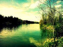 Natur-Landschaft von rewe