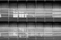 Lichtschutz  by Bastian  Kienitz