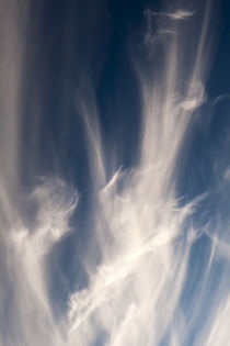 Cirrus Clouds by Jim Corwin