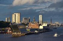 Hamburg in der Abendsonne von Iris Heuer