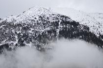 Tiroler Berge von rickeybauer