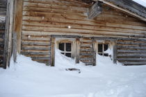 Schneehütte von rickeybauer
