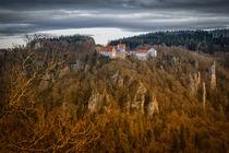 Burg Wildenstein bei Leibertingen II - Naturpark Obere Donau von Christine Horn