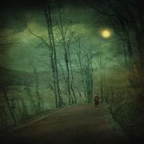 Wanderer by zapista