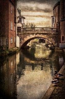 The Water Bridge In Newbury von Ian Lewis
