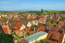 Blick auf die Stadt Breisach - View of the city Breisach von Thomas Klee