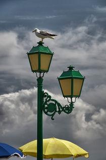 Lampe mit Möwe von Iris Heuer