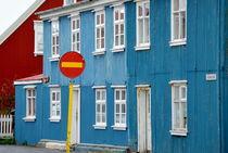 Blaues Haus von Iris Heuer