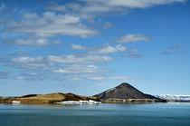 Mývatn See by Iris Heuer