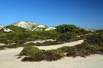 Dünenlandschaft Alentejo, Portugal von Iris Heuer
