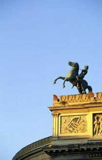 The Politeama Garibaldi Theatre. Palermo von David Lyons