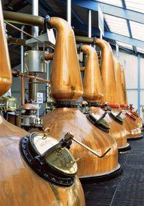 Laphroaig whisky distillery. The copper pot stills von David Lyons