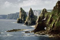 Sea stacks of Duncansby Head, northern Scotland by David Lyons