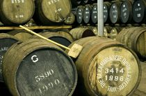 Glenmorangie Distillery. Single malt maturing  by David Lyons