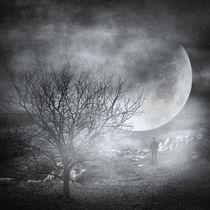 Dark night sky paradox von zapista
