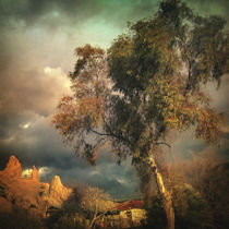 Tree of Confusion von olaartprints