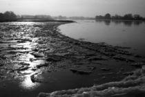 Hochwasser an der Elbe by frakn