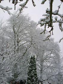Schneezauber by rosi-hainz