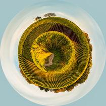 Bubenhäuser Höhe - little planet von Erhard Hess