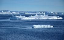 Eisberge in der Disco Bucht von Iris Heuer