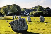 Prehistoric Stone Circles, Avebury by David Lyons
