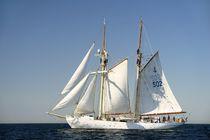 Swedish training schooner Falken. Baltic Sea #1 by David Lyons