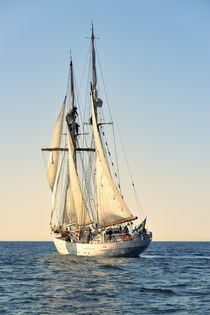 Swedish training schooner Falken. Baltic Sea #2 von David Lyons