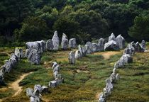 Kermario prehistoric alignments. Carnac, Brittany by David Lyons