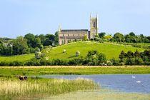 St. Patricks Cathedral, Downpatrick, Ireland by David Lyons