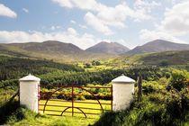 The Mourne Mountains, Northern Ireland #1 von David Lyons