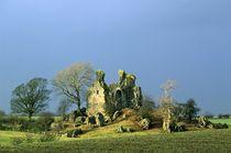 Craigie Castle. Kilmarnock, Scotland von David Lyons