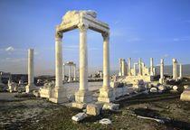 The Temple of Zeus. Laodicea, Turkey von David Lyons