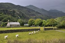 The Welsh mountain village of Beddgelert von David Lyons