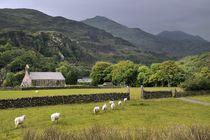 The Welsh mountain village of Beddgelert by David Lyons