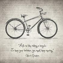 Albert Einstein Bicycle Quote by zapista