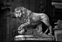 The Lion of the Piazza della Signoria, Florence. B&W von David Lyons